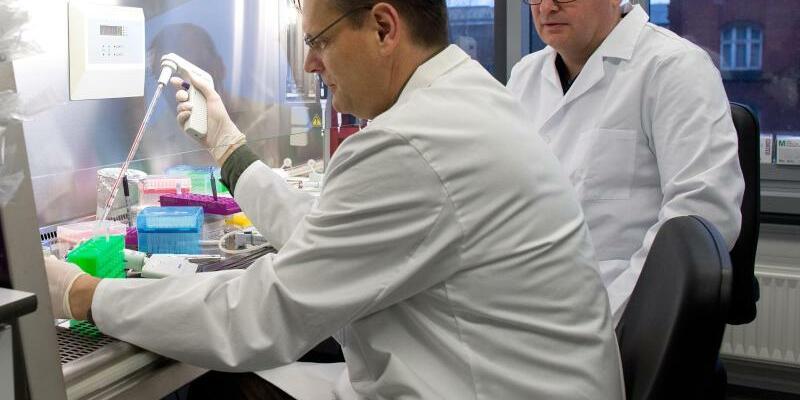 Aids-Grundlagenforschung - Foto: Der Molekularbiologe Frank Buchholz (l) und der Virologe Joachim Hauber haben einen neuen Ansatz bei der Forschung gegen Aids entwickelt. Die Wissenschaftler entwickelten eine Genschere, mit der sie das Erbgut der Viren aus infizierten Zellen herausschnei