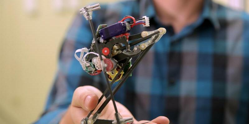 Roboter Salto - Foto: Stephen McNally