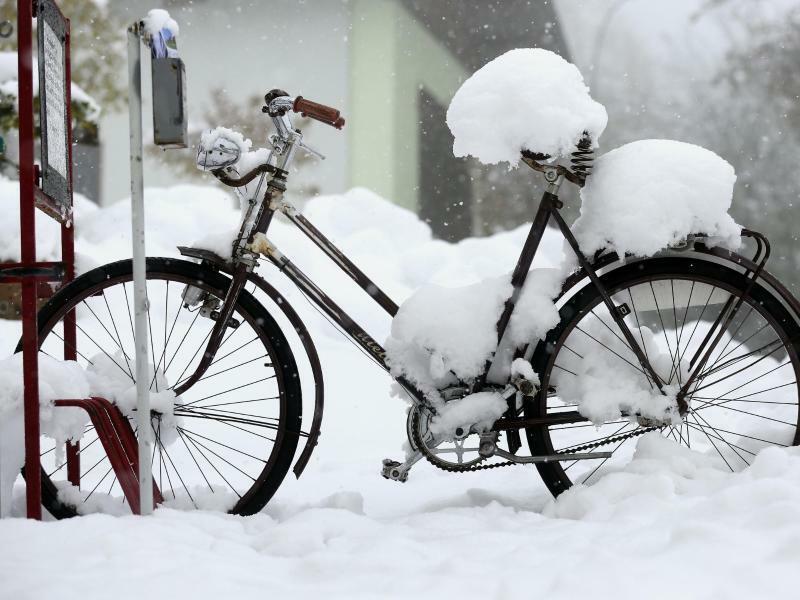 Von wegen Frühlingsgefühle - Foto: Thomas Warnack
