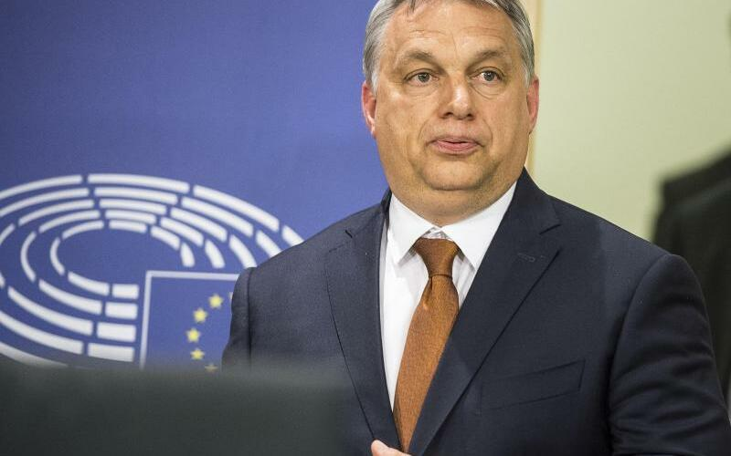 Viktor Orban - Foto: Wiktor Dabkowski