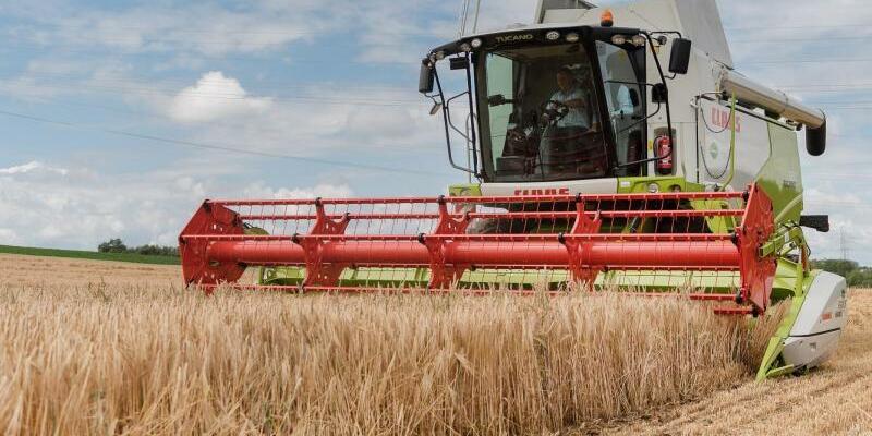 Getreideernte - Foto: Daniel Maurer