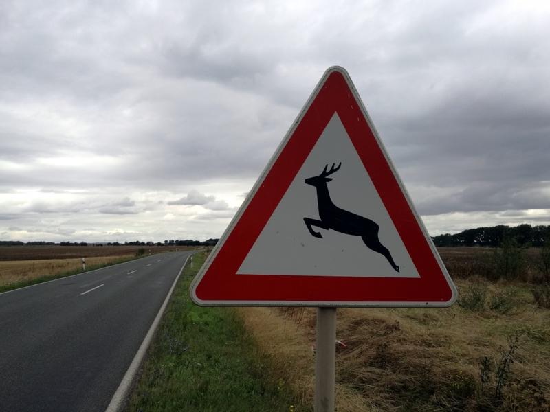 Warnschild vor Wildwechsel - Foto: über dts Nachrichtenagentur