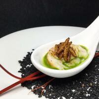 Würmer auf dem Teller - Foto: Dinner Echo