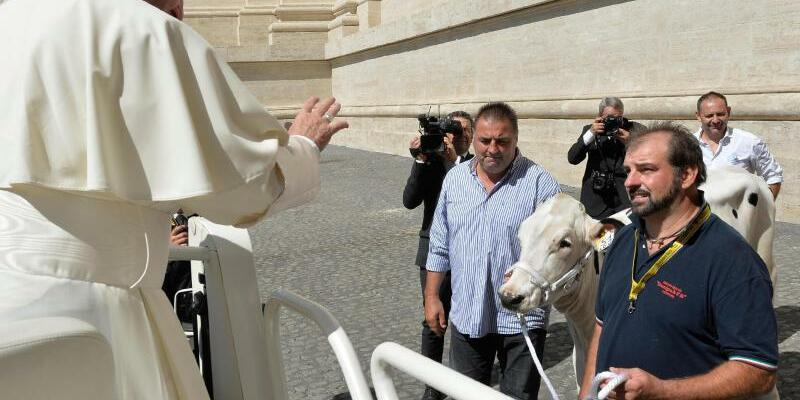 Papst Franziskus - Foto: L'Osservatore Romano pool