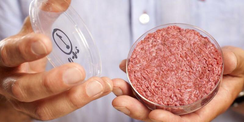 Künstliches Fleisch aus demLabor - Foto: Professor Mark Post von der Universität Maastricht präsentiert künstliches Fleisch aus demLabor in einer Petrischale. Foto:David Parry