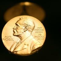 Nobelpreis - Foto: Kay Nietfeld
