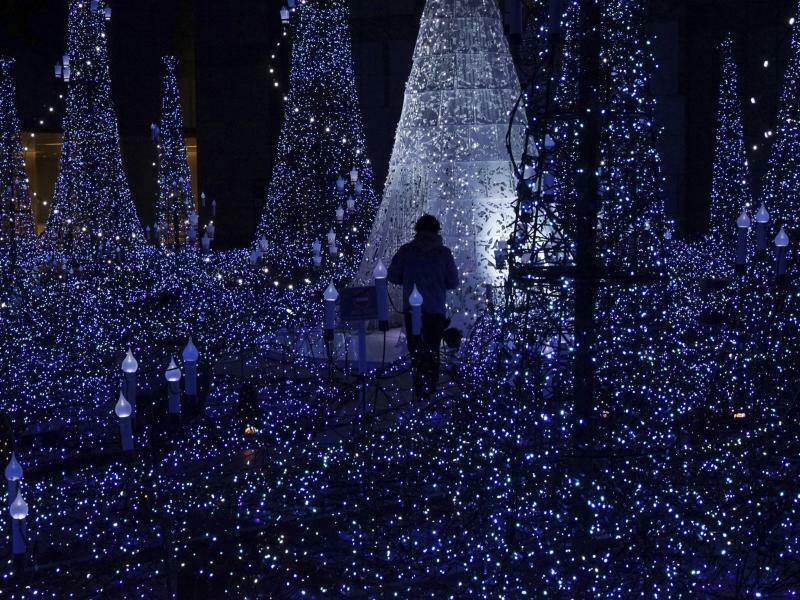 Weihnachtsbeleuchtung - Foto: Eugene Hoshiko