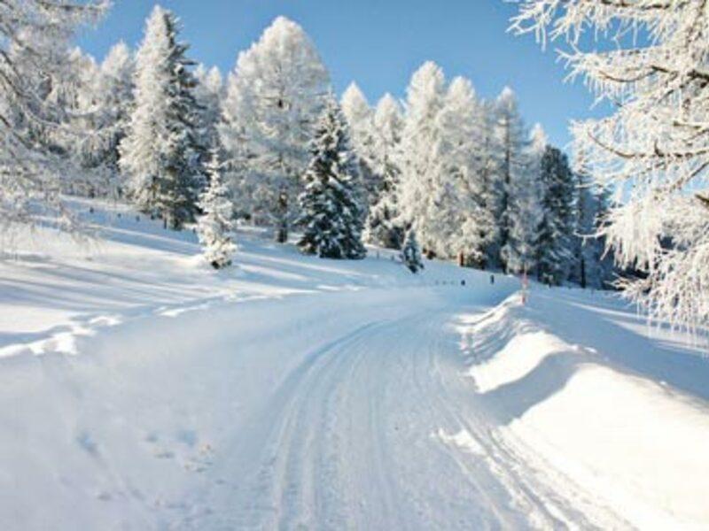 Winterlandschaft - Foto: Fotolia.com / Patrizia Tilly