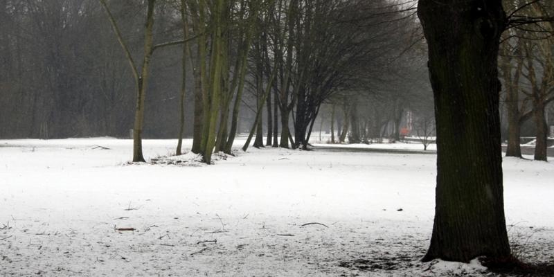 Winterlandschaft - Foto: über dts Nachrichtenagentur