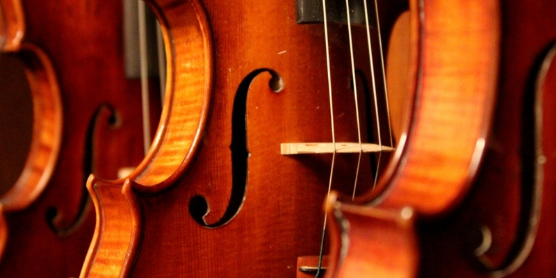 Geigen - Foto: über dts Nachrichtenagentur