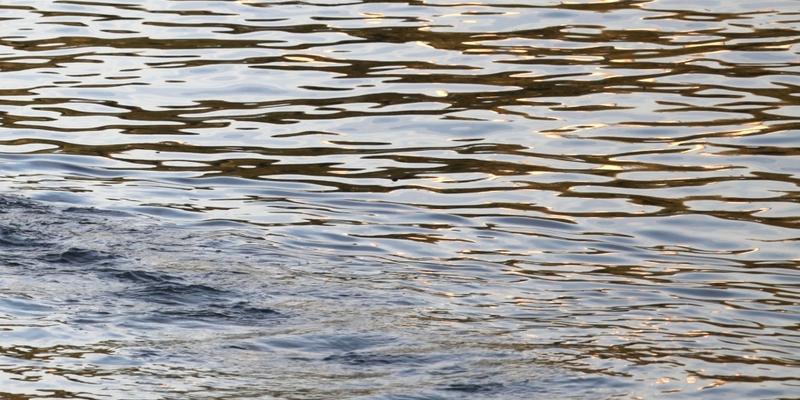 Wasser - Foto: über dts Nachrichtenagentur