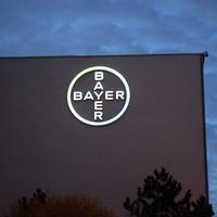 Bayer - Foto: über dts Nachrichtenagentur