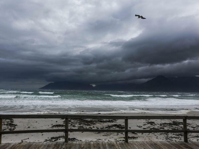 Ein Sturm zieht auf - Foto: Nic Bothma