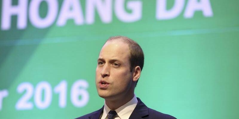 Prinz William - Foto: Luong Thai Linh