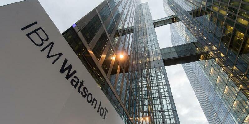 Watson - Foto: Matthias Balk