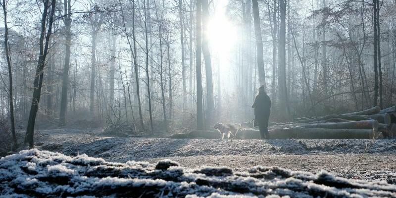 Winter - Foto: Bernd Weissbrod