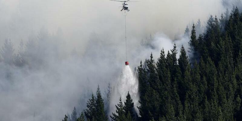 Waldbrand in Neuseeland - Foto: Mark Baker