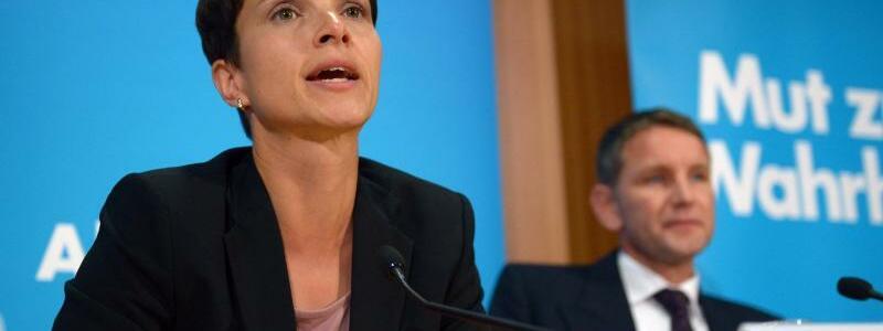 AfD im Umfragetief - Foto: Rainer Jensen