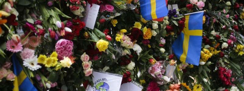 Blumen - Foto: Markus Schreiber