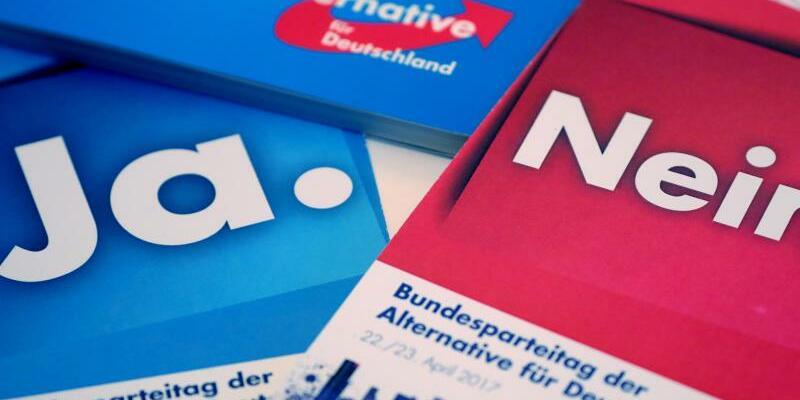 Parteitags-Stimmkarten - Foto: Michael Kappeler