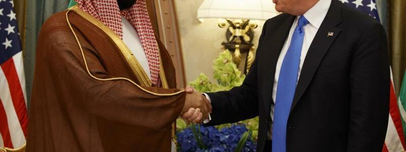 Präsident und Kronprinz - Foto: Evan Vucci