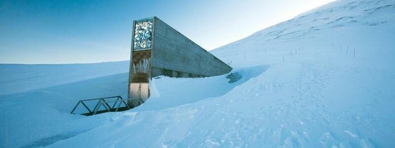 Im Eis - Foto: Jens Büttner