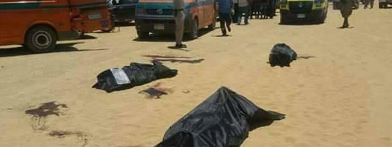 Opfer im Wüstensand - Foto: Hussein El-Foly