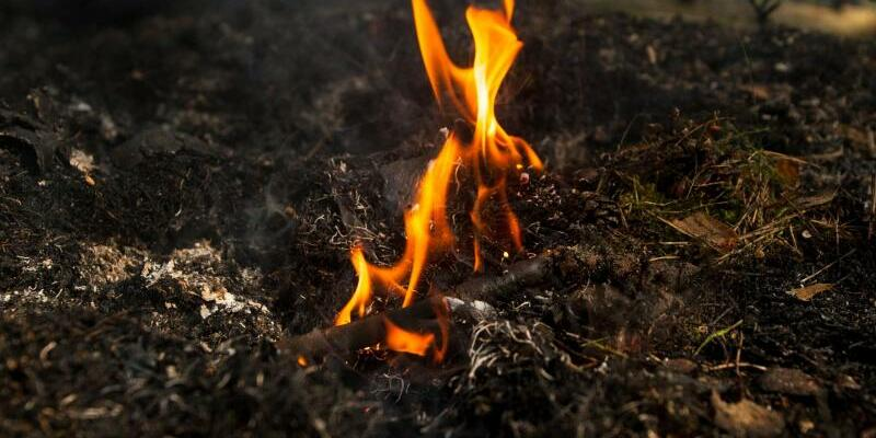 Feuer - Foto: Philipp Schulze/Archiv