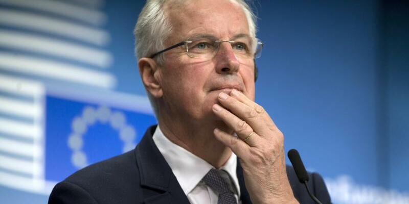 Barnier - Foto: Virginia Mayo