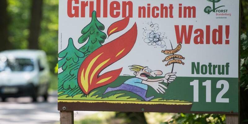 Höchste Waldbrandgefahr - Foto: Patrick Pleul