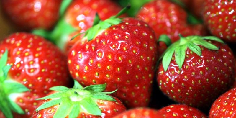 Erdbeeren - Foto: über dts Nachrichtenagentur