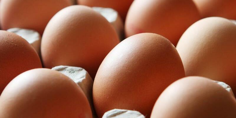 Verseuchte Eier auch in Deutschland? - Foto: Malte Christians