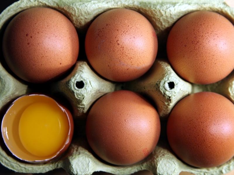 Eier - Foto: über dts Nachrichtenagentur