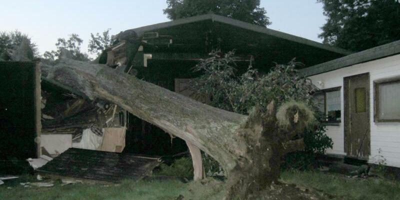 Baum stürzt in  Haus - Foto: Feuerwehr Mülheim an der Ruhr