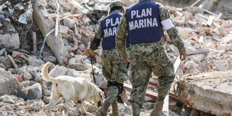 Schweres Erdbeben in Mexiko - Foto: El Universal