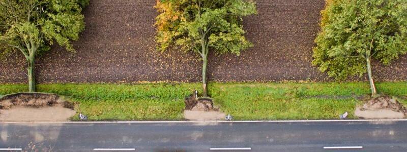 Die Umfaller - Foto: Julian Stratenschulte