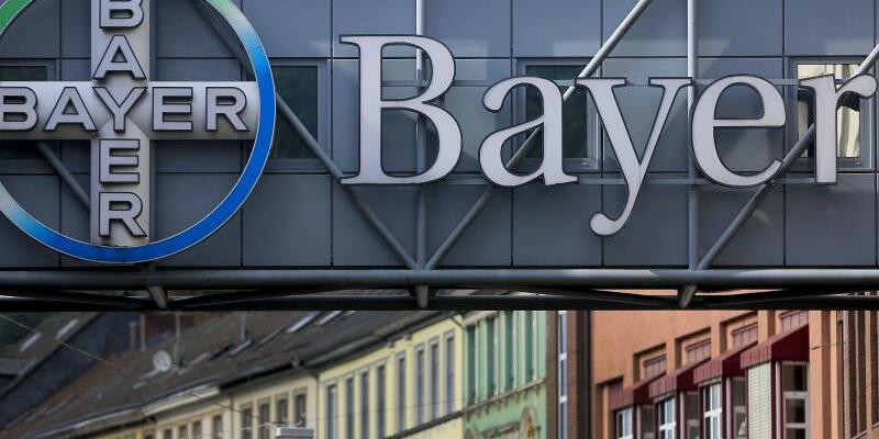 Bayer - Foto: Oliver Berg