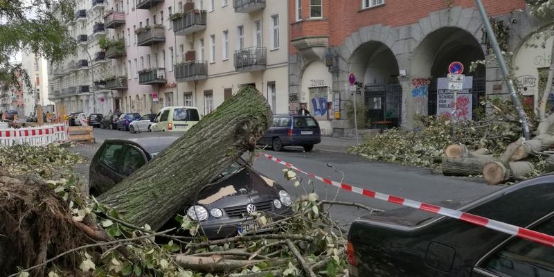 Schäden nach Sturmtief Xavier - Foto: über dts Nachrichtenagentur