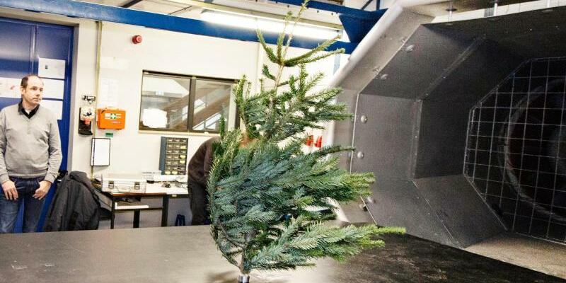 Christbaum im Windkanal - Foto: FH Aachen/Team Pressestelle