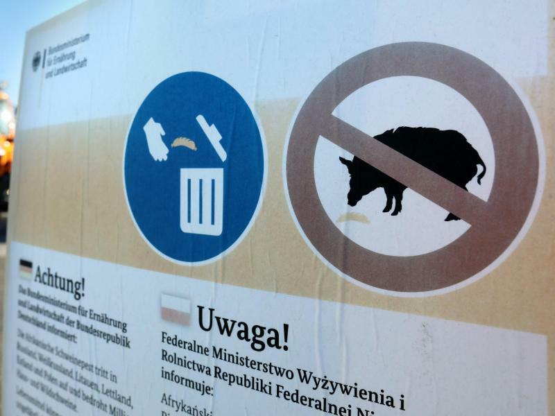 Aushänge warnen vor Schweinepest - Foto: Bernd Wüstneck