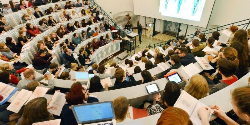 Medizinstudenten - Foto: Waltraud Grubitzsch