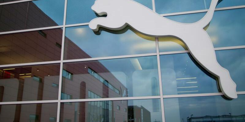 Puma - Foto: Daniel Karmann