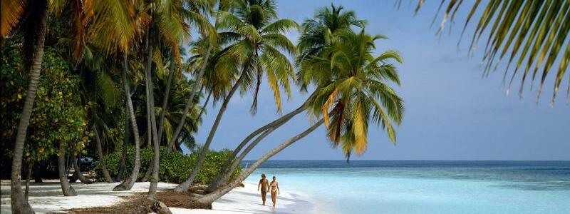 Malediven - Foto: Bedrohtes Paradies: Einsamer Palmenstrand auf der Malediven-Insel Little Bandos. Foto:Friedel Gierth