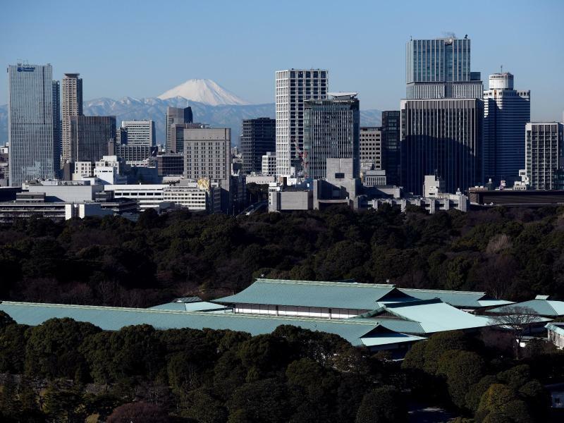 Millionenstadt Tokio - Foto: Maurizio Gambarini