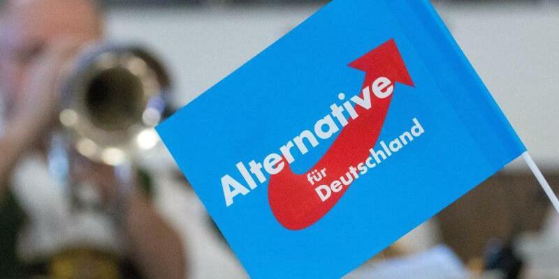 AfD-Fähnchen - Foto: Armin Weigel/Illustration