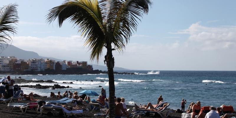 Palme an einem Strand - Foto: über dts Nachrichtenagentur