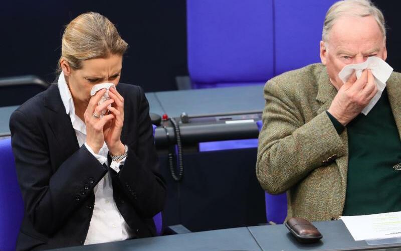 Weidel und Gauland - Foto: Michael Kappeler