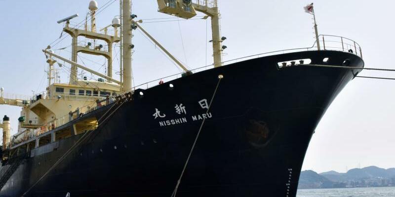 Walfänger - Foto: kyodo