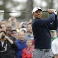 Tiger Woods - Foto: David J. Phillip/AP