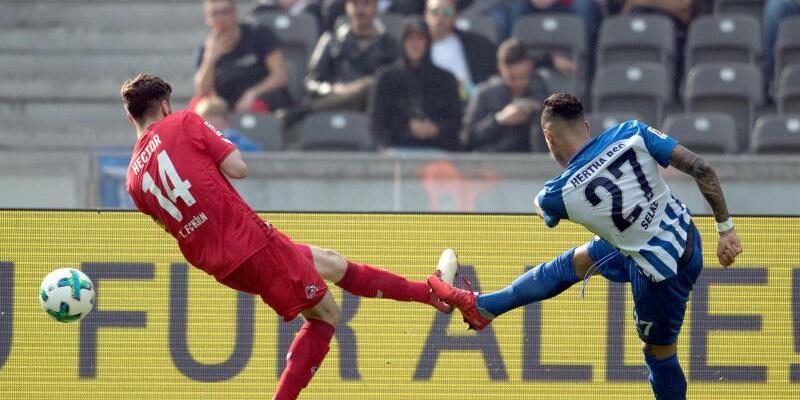 Hertha BSC - 1. FC Köln - Foto: Ralf Hirchberger